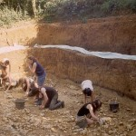The British Museum excavations at Barnham